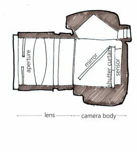 Cross section of a camera body with parts labeled